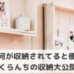 【写真で紹介】どこに何の収納が便利!?マイホームの収納は設計段階で考えるのが◎